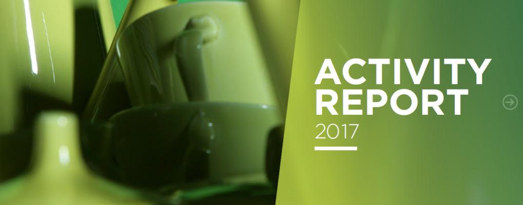 RREUSE 2017 Activity Report: Learn more about our policy work, communications and projects